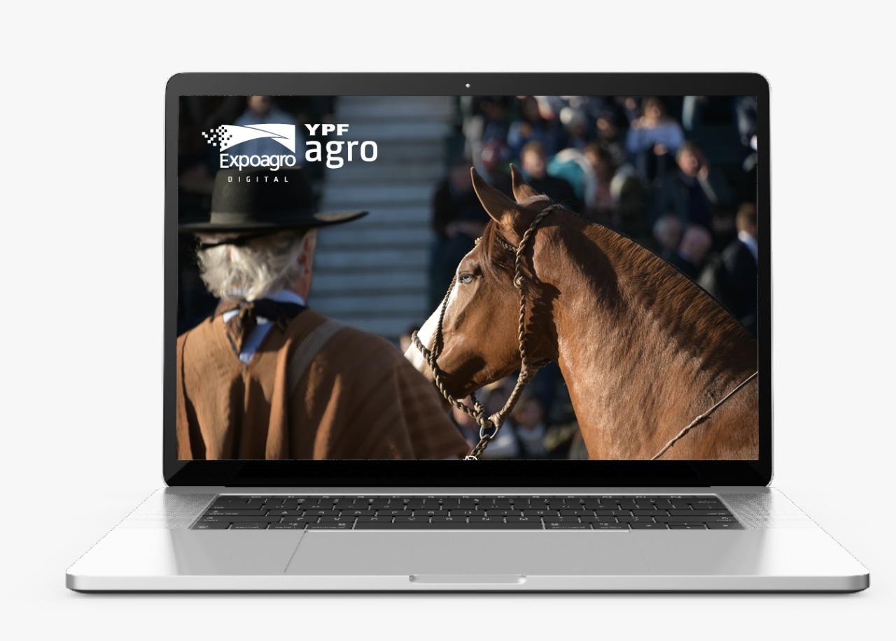 Expoagro Digital transmitirá el gran evento de Caballos Criollos del 24 al 26 de septiembre