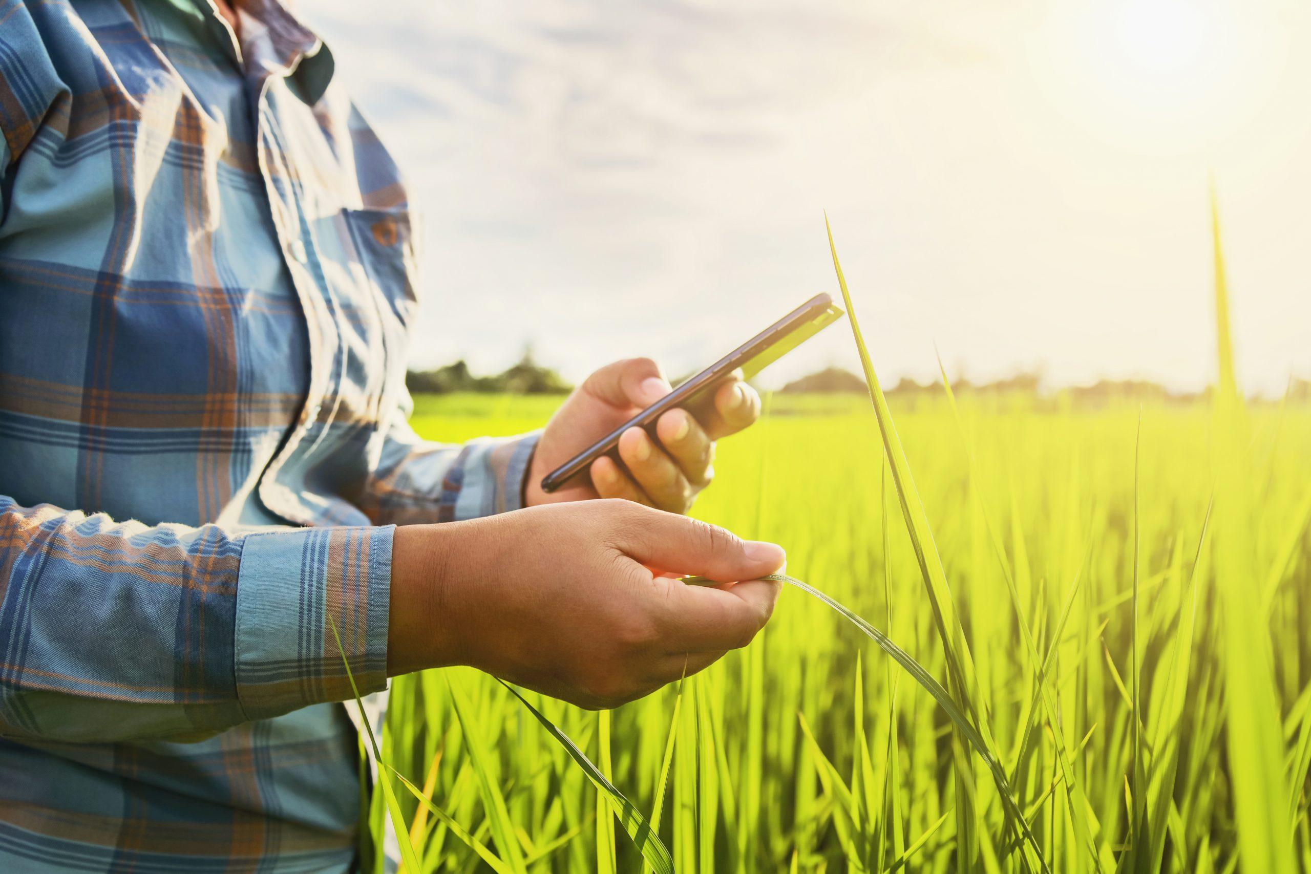01/03-Banco Galicia continúa innovando productos para el agro