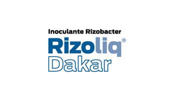 Rizoliq Dakar